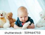 beautiful portrait of...   Shutterstock . vector #509464753