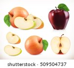apple. whole and pieces. sweet... | Shutterstock .eps vector #509504737