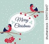 Merry Christmas Bullfinch...