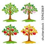 apple tree at different seasons.... | Shutterstock .eps vector #50963869