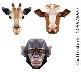 polygon animal pet zoo... | Shutterstock .eps vector #509676667