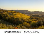 vineyard in autumn  beautiful... | Shutterstock . vector #509736247