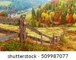 colorful autumn landscape scene ... | Shutterstock . vector #509987077