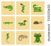 assembly flat icons exotic wild ... | Shutterstock .eps vector #510253633