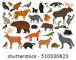 Stock vector collection of forest wild animals 510330823