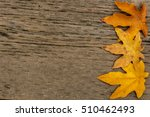 Small photo of Bigleaf maple (Acer macrophyllum) leaf border against textured wood background with copyspace