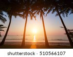 Sunset On A Tropical Beach Wit...