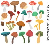 Mushrooms Vector Illustration...