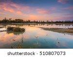 colorful sundown at swamp | Shutterstock . vector #510807073