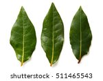 Three Bay Leaves Isolated On...