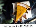 Pumpkin Pie Slice On Autumnal...