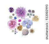 isolated flower background | Shutterstock . vector #512002993