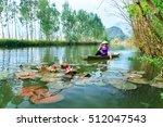 myduc  vietnam   october 19 ... | Shutterstock . vector #512047543