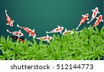 top view koi fish  on aquarium... | Shutterstock .eps vector #512144773