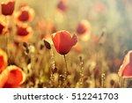 poppies in the field  ... | Shutterstock . vector #512241703
