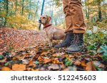 man hiking in autumn colorful... | Shutterstock . vector #512245603