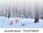 forest in the frost. winter... | Shutterstock . vector #512370823