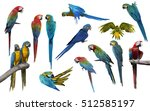 Set Of Macaw Bird Isolate On...