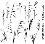 illustration with set of reed... | Shutterstock .eps vector #512592637