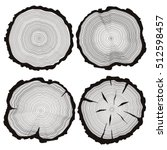 vector tree rings set  concept... | Shutterstock .eps vector #512598457