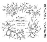 almond vector set | Shutterstock .eps vector #512724913