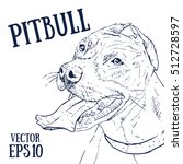 pitbull vector illustration.... | Shutterstock .eps vector #512728597