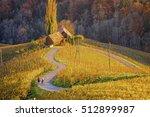 Vineyard Heart Of Slovenia....