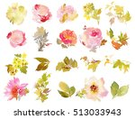 set of watercolor flowers.... | Shutterstock . vector #513033943