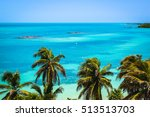 tropical mexican islands with...   Shutterstock . vector #513513703