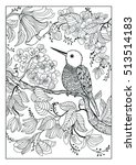 coloring book  twenty pages     ... | Shutterstock . vector #513514183
