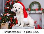 retriever puppy in a santa... | Shutterstock . vector #513516223