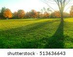 park | Shutterstock . vector #513636643