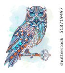 patterned owl with key on the... | Shutterstock .eps vector #513719497