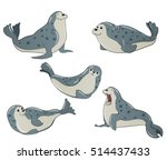 gray spotted seals | Shutterstock .eps vector #514437433