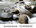 Long Exposure Of Creek Water ...