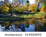central park in the autumn  new ... | Shutterstock . vector #514504093