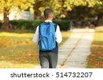 cute schoolboy walking along... | Shutterstock . vector #514732207