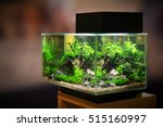 pet shop aquarium | Shutterstock . vector #515160997