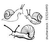 Hand Drawn Snails. Vector...