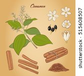 set of cinnamon  flowers ...   Shutterstock .eps vector #515608507