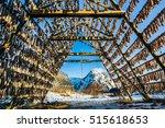 racks full of dried codfish ...   Shutterstock . vector #515618653