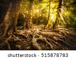 golden autumn scene in a forest ... | Shutterstock . vector #515878783