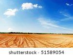 agricultural fields | Shutterstock . vector #51589054
