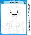 worksheet   trace and color the ... | Shutterstock .eps vector #516392617