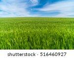 Wheat Field On A Nice Summer...