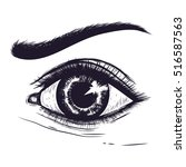 hand drawn detailed eye.pencil... | Shutterstock .eps vector #516587563