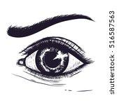 hand drawn detailed eye.pencil... | Shutterstock .eps vector #516587563