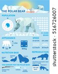 polar bears infographics. flat... | Shutterstock .eps vector #516726007