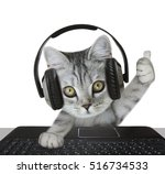 cat wearing headphones | Shutterstock . vector #516734533