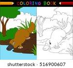 platypus cartoon coloring book  ... | Shutterstock .eps vector #516900607